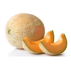 Mango Tommy (kilo)